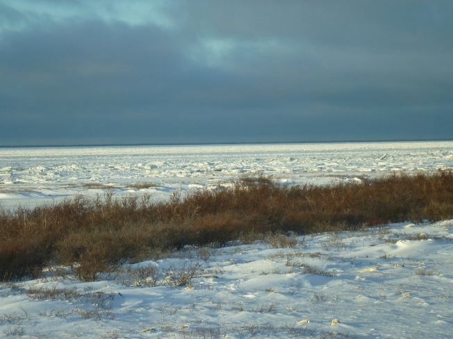 Note how ice is forming in the bay.
