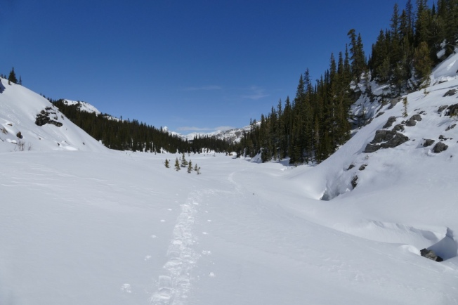 Snowshoe track along Wildcat Creek